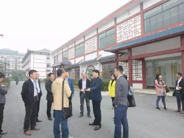 广西茶叶茶学界的专家教授莅临ca88黄茶产业园考察